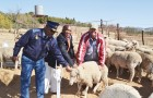 Anti-stock theft drive a success